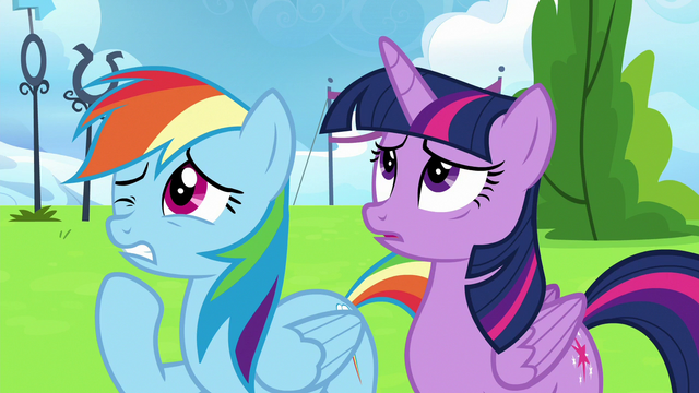 File:Twilight Sparkle and Rainbow Dash wincing S6E24.png