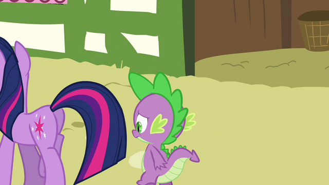 File:Twilight and Spike walking away S3E03.png