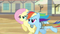 Fluttershy and Rainbow Dash galloping S2E14.png