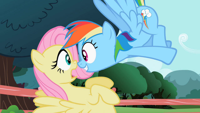 File:Rainbow Dash looking at Fluttershy S2E07.png