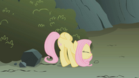 Fluttershy with locked up wings S01E07