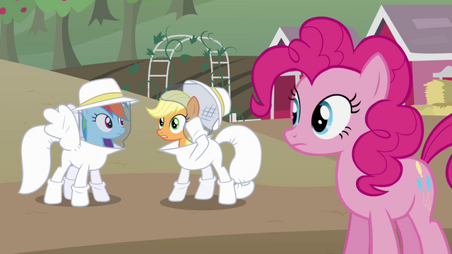 "File:Applejack ""what do we do now?"" S4E03.png"