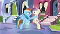 Rainbow Dash Interrogates S3E1.png