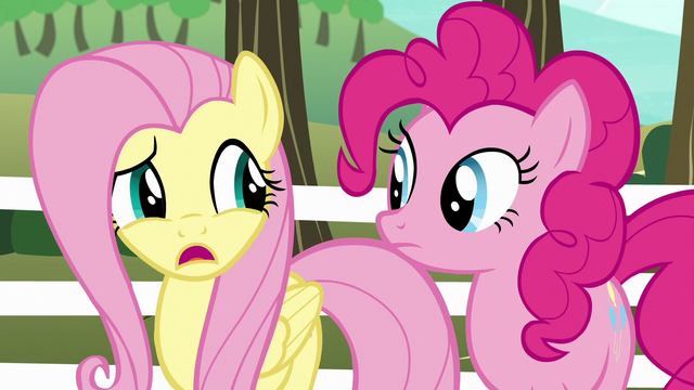 "File:Fluttershy ""we don't have a team"" S6E18.png"