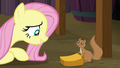 Fluttershy and squirrel smiling S5E23.png