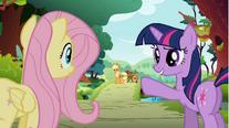 Nopony can herd like Applejack S01E10