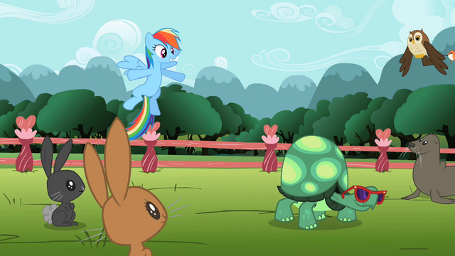 File:Rainbow Dash 'of speed' S2E07.png