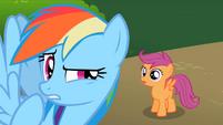 Rainbow Dash wait a minute S2E8