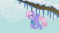 Rainbowshine looks at the icicles on the trees S1E11.png