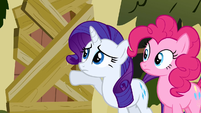 Rarity & Pinkie Pie knocking S2E19