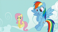 Fluttershy and Rainbow Dash are asked to help S2E24