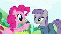 Pinkie Pie showing a rock to Maud S4E18.png