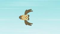 Owlowiscious flying S2E07