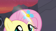 Flower glowing S4E16.png