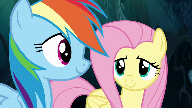 File:Fluttershy and Rainbow make a breakthrough S6E11.png