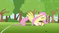 Fluttershy losing to butterflies S2E22.png