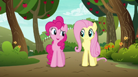"Pinkie Pie ""if anypony in this town cares"" S6E18"