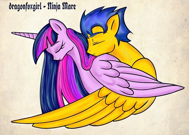 File:FANMADE Twilight and Flash Sentry by dragonfoxgirl.jpg