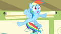"Rainbow Dash ""most spectacular"" S4E05.png"