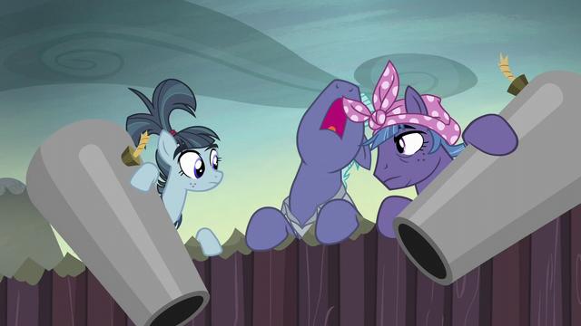 "File:McColt stallion ""open the gates!"" S5E23.png"