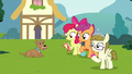 CMC and Zipporwhill with Ripley and dog toys S7E6.png