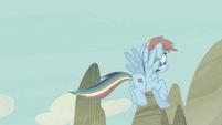 Rainbow Dash stops S5E2