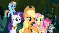 Applejack suggests Twilight should go back to Ponyville S4E02