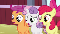 CMC shocked at Babs S3E4