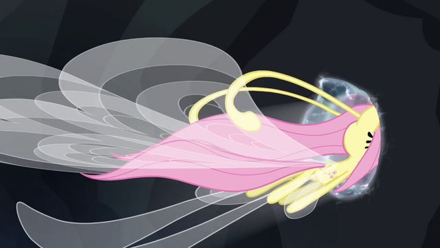 File:Fluttershy leaves through the portal S4E16.png