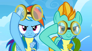 Lightning Dust and Rainbow Dash determined and about to put goggles on S3E7.png