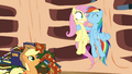 Rainbow Dash tries to encourage Fluttershy S3E05.png