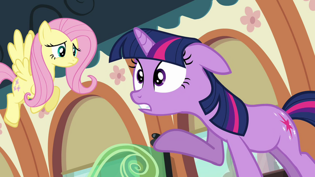 File:Twilight and Fluttershy on the train S03E12.png
