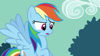 Rainbow Dash still confused S4E18