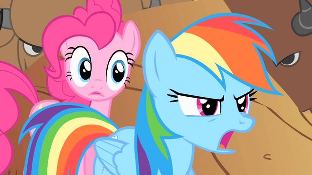File:Rainbow Dash tells Pinkie to run S1E21.png