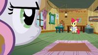 Rainbow Dash toy cameo S2E23