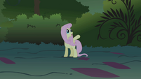 "Fluttershy cries ""Wait!"" as Applejack tries to subdue the manticore S1E02"