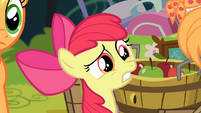 Apple Bloom 'Why is that perfect' S4E09