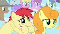 Earth pony stallion biting his hooves S4E24