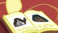 Fluttershy showing the hibernation book S5E5.png