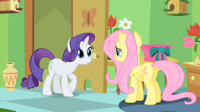 File:Rarity and Fluttershy are about to have a talk S1E20.png
