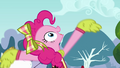 Pinkie 'P is for 'Perfect'!' S4E10.png