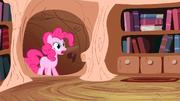 Pinkie Pie gasp S2E20