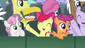 Cutie Mark Crusaders cheering for Gabby S6E19.png