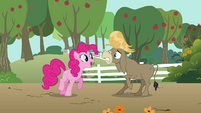 Pinkie Pie tries to apologize to Cranky S02E18