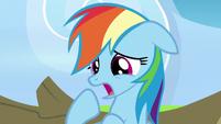 """Rainbow Dash """"you're right"""" S7E7"""