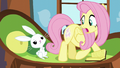Fluttershy looks at her glowing cutie mark S5E23.png