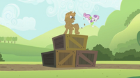 Rarity flinging Sweetie Belle over the top S2E05