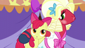 "Apple Bloom and Orchard Blossom ""that special bond of sisterhood"" S5E17.png"
