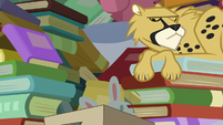 Cheetah looking at Goldie Delicious S7E13