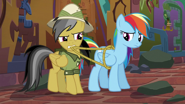 File:Daring pulls ropes off of Rainbow Dash S6E13.png